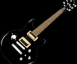 Quelles essences d ebois sont utilisées pour fabriquer les guitares